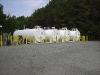 Brunswick-Co---Main-Fuel-Site-0006